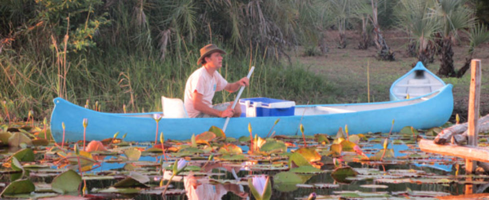 Canoeing and birdwatching